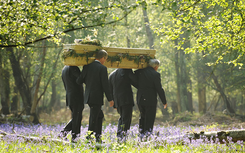 d-robinson-inset-image-core-services-green-natural-funerals