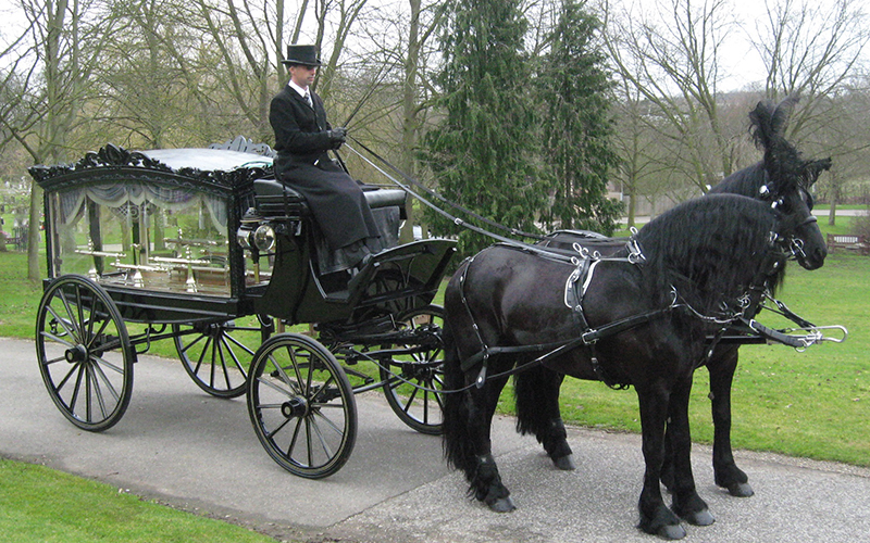 d-robinson-inset-slider-image-epping-hourse-and-carriage
